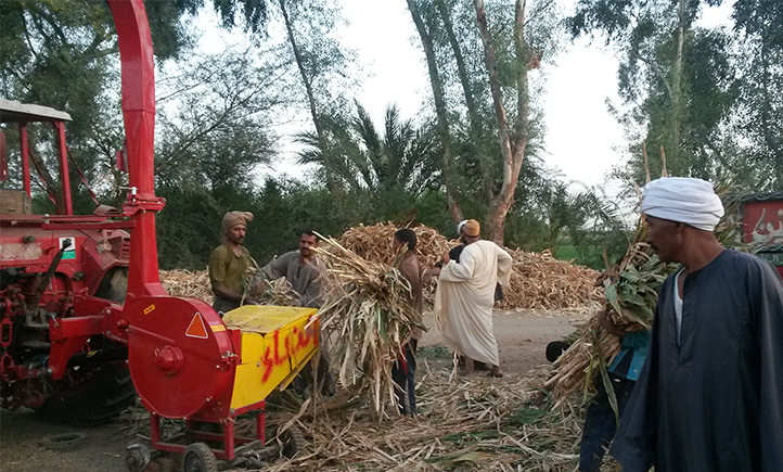 Recycling of agricultural residues